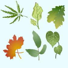 Free Leaves Silhouettes Royalty Free Stock Images - 9538999