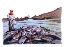 Free Fishing Stock Image - 9539241