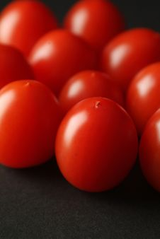 Free Group Tomatoes Stock Images - 9539254