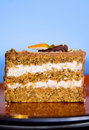 Free Carrot Cake Royalty Free Stock Photos - 9545768