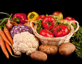 Free Pile Of Various Vegetables Royalty Free Stock Photography - 9545967