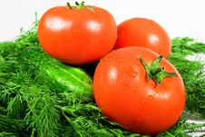 Free Vegetable Stock Photo - 9541230