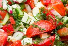 Free Salad Closeup Shot Stock Images - 9542044