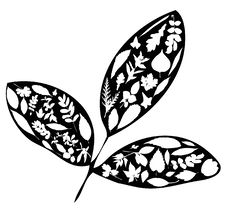 Free Leaves Shaped Collection Stock Photos - 9542463
