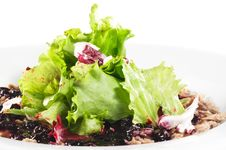 Breast Of Duck Salad Royalty Free Stock Photo
