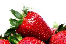 Free Strawberries Stock Photo - 9543280