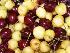 Free Cherry Stock Photography - 9545472