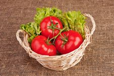 Tomatoes And Lettuce In Basket Stock Photography