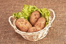 Free Four Potatoes In Basket Royalty Free Stock Photography - 9545947