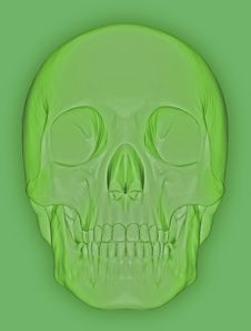 Scull 3d Stock Photo