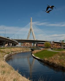 Free Zakim Bridge Royalty Free Stock Images - 9547619