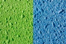 Free Sponge Texture Stock Photos - 9547793