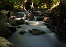 Free Stream Flowing Through Rocks In Forest Stock Photography - 95409412