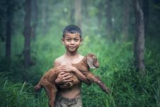 Free Boy With Lamb Royalty Free Stock Images - 95476849