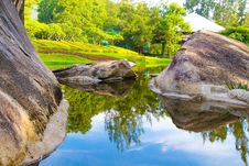 Free Trees Reflecting On Lake In Park Stock Image - 95476941