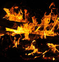 Free Tongue Of Flame Royalty Free Stock Photography - 9557697