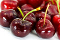 Free Ripe, Juicy Cherries,isolated On White Background Stock Image - 9559131