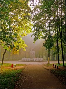 Free Morning Foggy Stock Images - 9550324