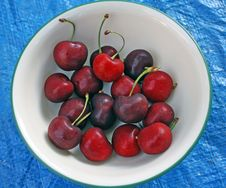 Free Cherries In Green Rimmed Bowl Stock Photography - 9553382