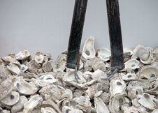 Oyster Tongs Royalty Free Stock Photography