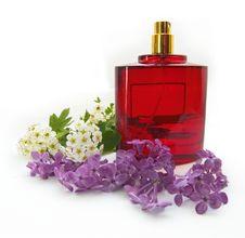 Free Bottle Of Perfume Stock Image - 9554311