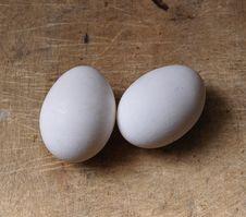 Free Eggs Stock Photo - 9555330