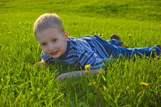 Boy Lies On A Grass Royalty Free Stock Images