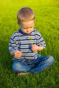 Free Boy Sits On Grass Royalty Free Stock Photos - 9558288