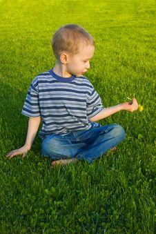 Free Boy Sits On Grass Stock Photos - 9558313