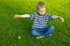 Free Boy Sits On Grass Stock Photography - 9558332