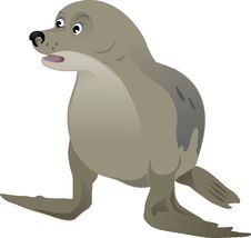 Free Fauna, Dog Like Mammal, Mammal, Seals Stock Photography - 95522172