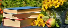Free Books On Table With Apple Stock Photos - 95536763
