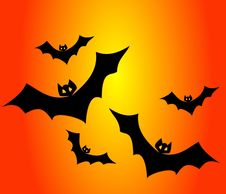 Free Mammal, Bat, Leaf, Orange Stock Photos - 95547553