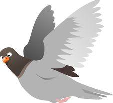 Free Bird, Beak, Fauna, Wing Royalty Free Stock Image - 95547596