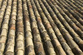 Free Spanish Roof Tiles Royalty Free Stock Photography - 9568557