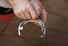 Free Farrier With Old Horseshoe Stock Image - 9561921