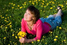 Free Dandelions Glade Royalty Free Stock Images - 9562009