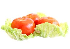 Free Tomatoes On Salad. Stock Photography - 9563452