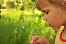 Free The Girl With A Dandelion Stock Photography - 9563612