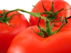 Free Tomatoes On The Vine Stock Photos - 9565793