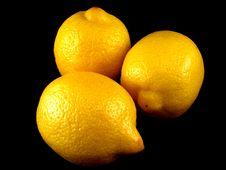 Free Three Lemons Royalty Free Stock Photography - 9565807