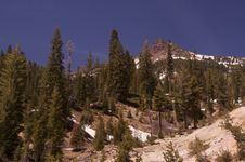 Mountian Peak And Pine Trees Stock Images