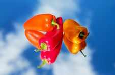 Free Close Up, Bell Peppers And Chili Peppers, Peppers, Chili Pepper Royalty Free Stock Photo - 95615485
