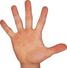 Free Finger, Hand, Hand Model, Thumb Stock Photo - 95617050