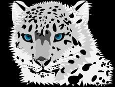 Free Black And White, Black, Face, Leopard Royalty Free Stock Photography - 95619157
