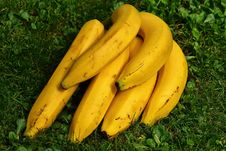 Free Banana, Yellow, Produce, Banana Family Stock Photos - 95622433