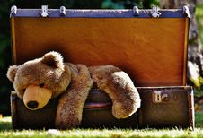 Free Teddy Bear, Snout, Stuffed Toy, Bear Stock Photos - 95623483