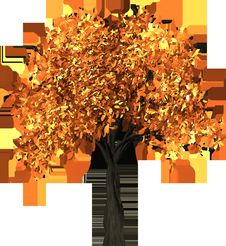 Free Tree, Orange, Leaf, Plant Royalty Free Stock Photo - 95624675