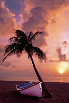 Free Sky, Sunset, Sea, Palm Tree Royalty Free Stock Photos - 95625528