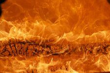 Free Flame, Geological Phenomenon, Computer Wallpaper, Organism Stock Photo - 95661290